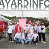 Bayardinfos